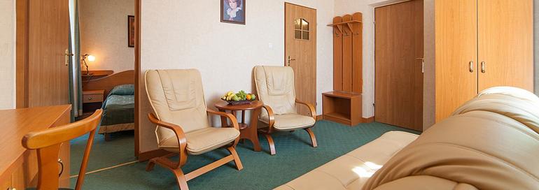 Na terenie Hotelu Henryk zajdują się trzy apartamenty. Każdy z nich składa się z sypialni i klasycznie urządzonego, przytulnego saloniku. W sypialni znajduje się łoże małżeńskie, w drugim pokoju: sofa, stolik, dwa fotele oraz biurko. Powierzchnia apartamentu to około 22m². Pokoje te posiadają balkony, telefon i możliwość łączenia się z internetem. Na życzenie Gości wypożyczamy bezpłatnie suszarki, żelazka i deski do prasowania. We wszystkich pokojach, jak i całym obiekcie obowiązuje zakaz palenia.