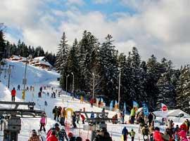 Ośrodek narciarski HenrykSki - Stok